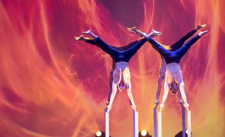 Akrobatik auf höchstem Niveau - die Gruppe Sleepless. (Foto: SOD/Stefan Holtzem)