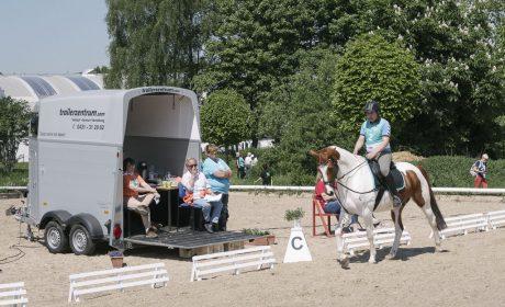 Klassifizierung, 01 Level A - Dressur, Timur Acar auf Justin, RT für Behinderte Werne (Foto: SOD/Jörg Brüggemann OSTKREUZ)