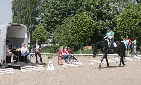 Klassifizierung, 01 Level A - Dressur, Marie-Christin Chevalier auf Laska, Thema Pferdesport Sachsen (Foto: SOD/Jörg Brüggemann OSTKREUZ)