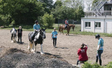 Training und ausprobieren der Pferde (Foto: SOD/Jörg Brüggemann OSTKREUZ)