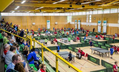 Eine tolle Sicht in die Stralsundhalle beim Tischtennis. (Foto: SOD/ Florian Conrads)
